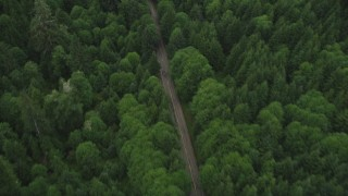 AX56_051 - 5K stock footage aerial video of bird's eye view of State Route 202 through evergreen forest, Clatsop County, Oregon