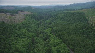 AX56_052 - 5K stock footage aerial video follow State Route 202 through evergreen forest near clear cut areas, Clatsop County, Oregon