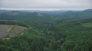 AX56_054 - 5K stock footage aerial video fly over evergreen forest beside clear cut areas, Clatsop County, Oregon