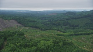AX56_057 - 5K stock footage aerial video fly over clear cut area with new growth near evergreen trees in Clatsop County, Oregon