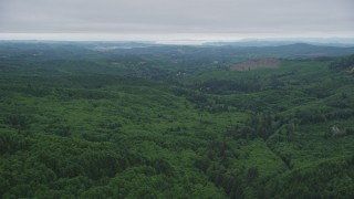 AX56_058 - 5K stock footage aerial video of flying over evergreen forest in Clatsop County, Oregon