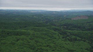 AX56_059 - 5K stock footage aerial video of a wide expanse of evergreen forest in Clatsop County, Oregon