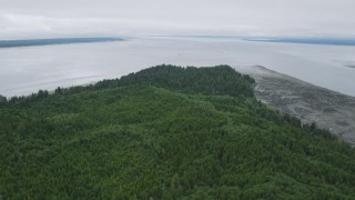 AX56_150 - 5K stock footage aerial video of evergreen forest and marshy shore on Long Island, Washington