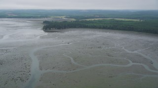 AX56_154 - 5K stock footage aerial video of wetlands on the shore of Willapa Bay, Washington
