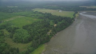 AX56_156 - 5K stock footage aerial video of evergreen forest by wetlands on the shore of Willapa Bay, Nemah, Washington