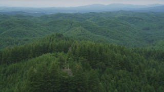 AX57_003 - 5K stock footage aerial video fly over forest-covered hill to approach more hills in the background in Satsop, Washington