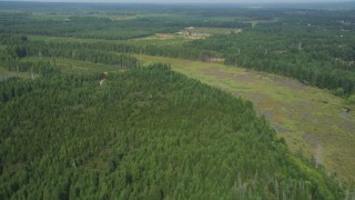 AX58_002 - 5K stock footage aerial video of a strip of marshland through an evergreen forest, Shelton, Washington