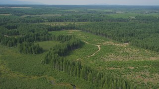 AX58_003 - 5K stock footage aerial video fly over dirt roads through a forest logging area in Shelton, Washington