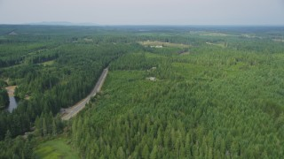 AX58_009 - 5K stock footage aerial video fly over evergreens near homes by East Mason Lake Road, Shelton, Washington
