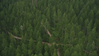 AX58_040 - 5K stock footage aerial video of flying over country roads through a forest, Gig Harbor, Washington