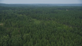 AX58_048 - 5K stock footage aerial video fly over evergreen forest in Olalla, Washington