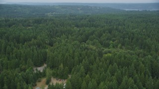 AX58_050 - 5K stock footage aerial video fly over rural homes partially hidden by evergreen trees in Olalla, Washington