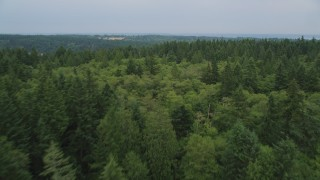 AX58_057 - 5K stock footage aerial video fly over a home and evergreen forest on Vashon Island, Washington