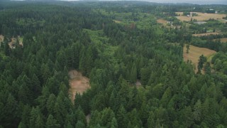 AX58_060 - 5K stock footage aerial video of trees on the edge of an evergreen forest on Vashon Island, Washington
