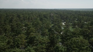 AX60_081 - 5K stock footage aerial video of passing by trees and water in a swamp in St. John the Baptist Parish, Louisiana