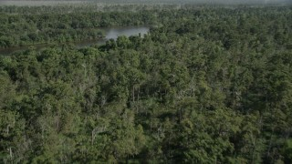 AX60_083 - 5K stock footage aerial video fly over a swamp to reveal a river in St. John the Baptist Parish, Louisiana