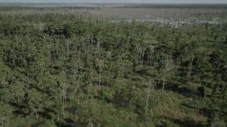 AX60_084 - 5K stock footage aerial video fly over a swamp and reveal a dirt road in St. Charles Parish, Louisiana