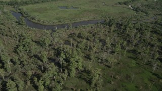 AX60_085 - 5K stock footage aerial video of passing swamp and a river in St. Charles Parish, Louisiana
