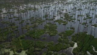 AX60_087 - 5K stock footage aerial video of flying over a swamp in St. Charles Parish, Louisiana