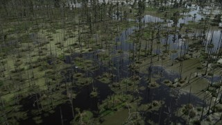 AX60_088 - 5K stock footage aerial video fly over swamplands in St. Charles Parish, Louisiana
