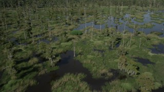 AX60_090 - 5K stock footage aerial video fly low altitude over a swamp in St. Charles Parish, Louisiana