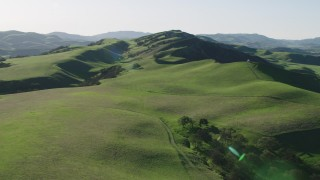 AX70_119 - 4K stock footage aerial video Flying over hills and trees in Hollister, California