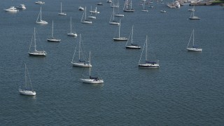 AX91_042 - 4K stock footage aerial video of passing by sailboats anchored in the water in Rye, New York