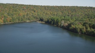 AX91_146 - 4K stock footage aerial video tilt from lake to forest on the shore in autumn, Lake Saltonstall, Connecticut