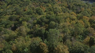 AX91_150 - 4K stock footage aerial video of flying over forest in autumn, East Haven, Connecticut