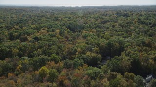 AX91_176 - 4K stock footage aerial video of flying over forest, revealing homes in autumn, Guilford, Connecticut