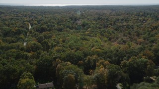 AX91_177 - 4K stock footage aerial video flyby homes and forest, reveal road through forest in autumn, Guilford, Connecticut