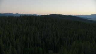 CAP_002_008 - HD stock footage aerial video of flying over evergreen forest in Jackson Hole, Wyoming, twilight