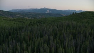 CAP_002_010 - HD stock footage aerial video flyby hills and forest in Jackson Hole, Wyoming, twilight