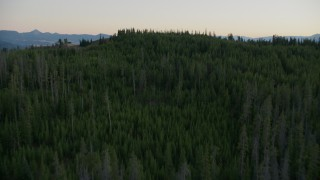 CAP_002_011 - HD stock footage aerial video of flying over evergreen forest and brown hills in Jackson Hole, Wyoming, twilight