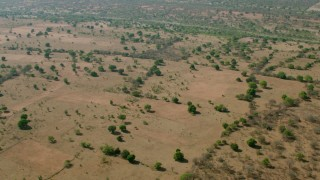 CAP_026_012 - HD stock footage aerial video of a view of trees in open savanna, Zimbabwe