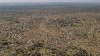CAP_026_037 - HD stock footage aerial video of trees and brush in a wide expanse of savanna, Zimbabwe
