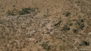 CAP_026_038 - HD stock footage aerial video of tilting to a bird's eye view of savanna, Zimbabwe