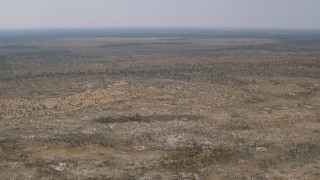 CAP_026_040 - HD stock footage aerial video of flying over savanna and tilting to trees and brush, Zimbabwe