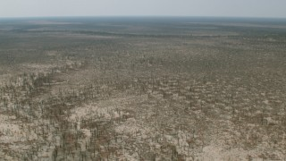 CAP_026_047 - HD stock footage aerial video of a wide view of trees and brush in the open savanna, Zimbabwe