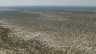 CAP_026_049 - HD stock footage aerial video of flying over trees and brush around a shallow river in the open savanna, Zimbabwe