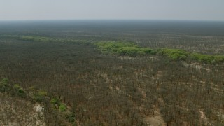 CAP_026_054 - HD stock footage aerial video of approaching green trees lining a river in the open savanna, Zimbabwe