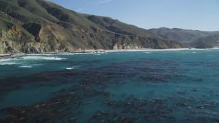 DCSF11_027 - Aerial stock footage of 5K Aerial Video Fly over ocean kelp near steep coastal cliffs, Big Sur, California
