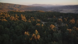DCSF12_015 - Aerial stock footage of 5K Aerial Video Fly over forest at sunset, San Luis Obispo County, California