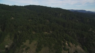 DFKSF06_135 - 5K stock footage aerial video of flying over evergreen forest and mountains near Point Reyes National Seashore, Olema, California