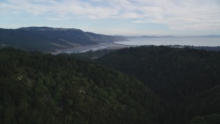DFKSF06_138 - 5K stock footage aerial video fly over forest in Point Reyes National Seashore reveal Bolinas Lagoon, Olema, California