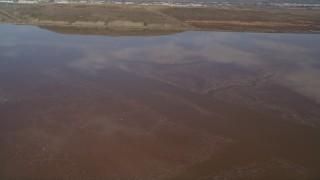 DFKSF11_007 - 5K stock footage aerial video of flying over flocks of birds in marshlands, Fremont, California