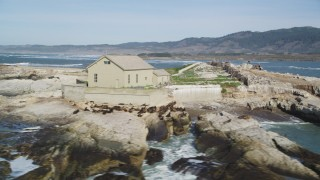 DFKSF15_105 - 5K stock footage aerial video of passing by abandoned buildings, seals, sea lions, Año Nuevo Island, California