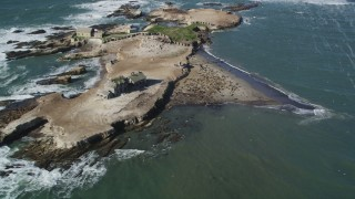 DFKSF15_107 - 5K stock footage aerial video of flying away from seals and sea lions on Año Nuevo Island, California