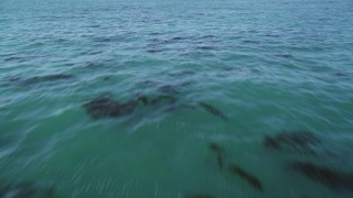 DFKSF15_124 - 5K stock footage aerial video of tilting from kelp forests to a wider view of the ocean, Northern California