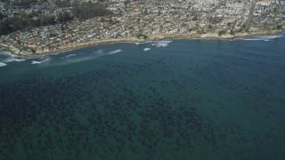 DFKSF15_140 - 5K stock footage aerial video of kelp forests near coastal neighborhoods, Santa Cruz, California